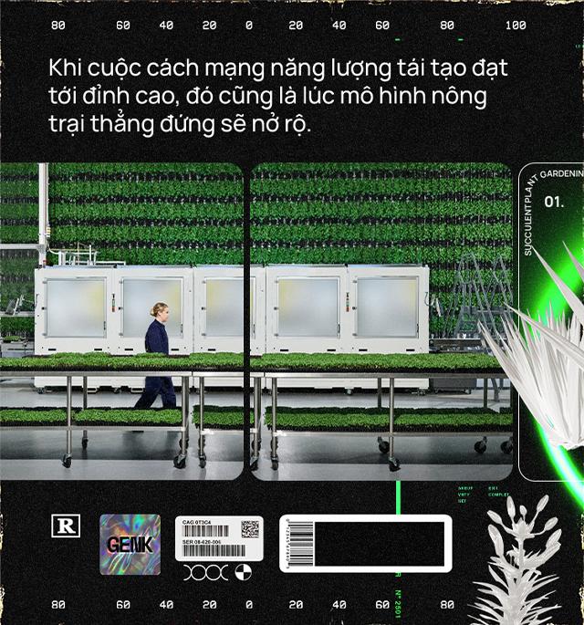 Sẽ thế nào khi rau được trồng trong nhà máy, bằng robot, AI và thế hệ nông dân 4.0? - ảnh 18