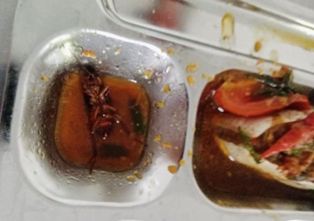 Học sinh lớp 11 ở TP.HCM phát hiện gián chết trong thức ăn: Đại diện trường học nói gì? - ảnh 1