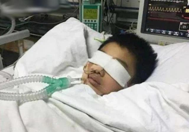 Cậu bé 7 tuổi bị ép học đến mức tím bầm người, đột tử trên bàn học, lời nhắn nhủ cuối cùng khiến gia đình ân hận cả đời - ảnh 1