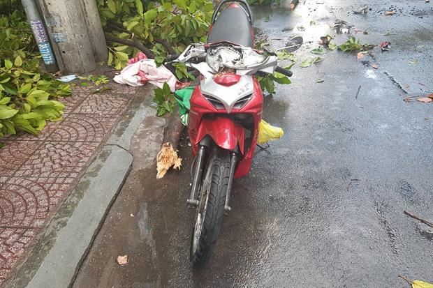 Clip: Khoảnh khắc cây cổ thụ bật gốc đè trúng ô tô đang di chuyển trên đường phố Sài Gòn khiến nhiều người thót tim - Ảnh 5.