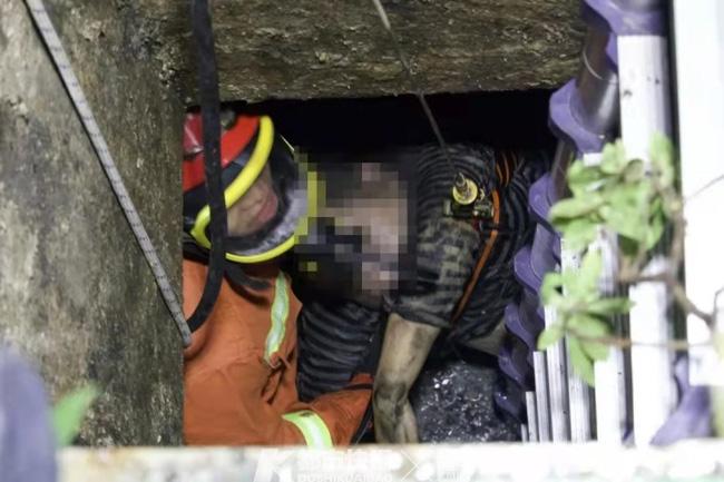 Nhờ chồng cứu chó cưng bị rơi xuống cống, vợ đấm ngực khóc tức tưởi khi tự tay đẩy người thân vào cái bẫy chết người - ảnh 2