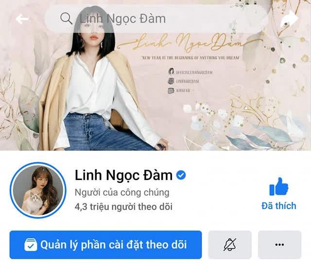 Linh Ngọc Đàm cán mốc 4 triệu người theo dõi trên Instagram, giữ vững vị thế bà hoàng MXH trong giới streamer - ảnh 3