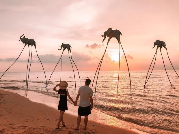 Đi Phú Quốc thi nhau chụp ảnh với những chú voi chân dài nhưng liệu bạn đã biết chúng có nguồn gốc từ đâu? - Ảnh 1.