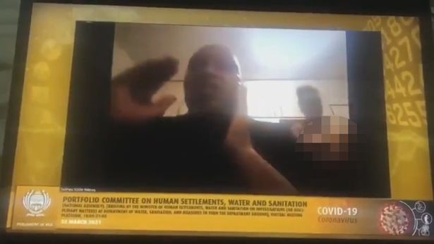 Clip: Quan chức Nam Phi họp online, vợ khỏa thân đi lại phía sau làm cả ủy ban náo loạn - Ảnh 2.