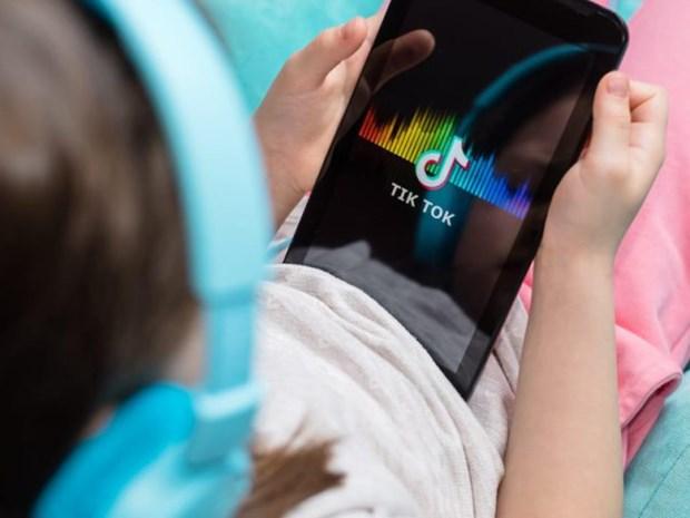 TikTok mở chiến dịch khuyến khích người dùng kiểm chứng thông tin - ảnh 1
