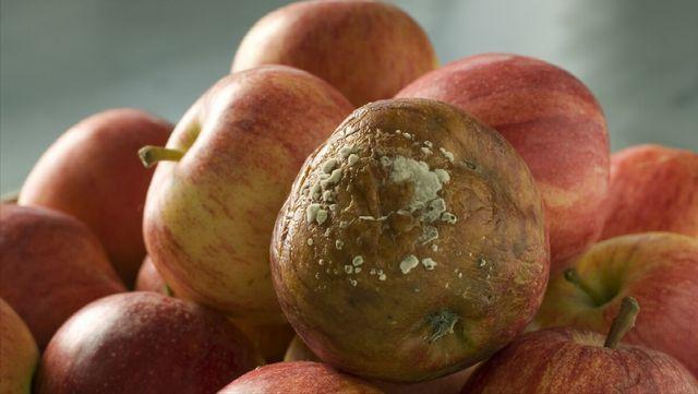 Những loại hoa quả được gọi là chất kích hoạt tế bào ung thư, rất nhiều gia đình đang ăn mỗi ngày mà không biết - ảnh 2