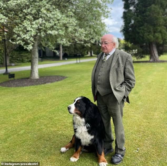 Chó cưng của Tổng thống Ireland càn quét MXH vì màn phá rối chủ đáng yêu hết sức ngay trên sóng trực tiếp - ảnh 3