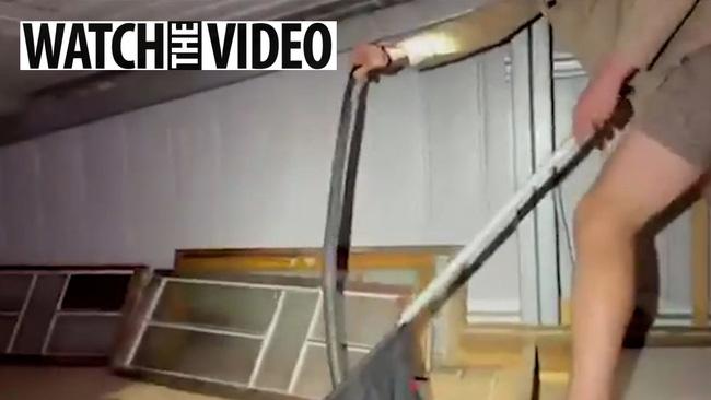 Kiểm tra tầng gác mái, người đàn ông thất kinh bạt vía khi thấy 50 tấm da rắn khô rang, phát hiện tiếp theo còn kinh dị hơn - ảnh 1