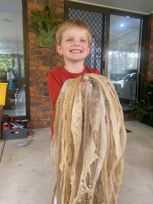 Kiểm tra tầng gác mái, người đàn ông thất kinh bạt vía khi thấy 50 tấm da rắn khô rang, phát hiện tiếp theo còn kinh dị hơn - ảnh 2