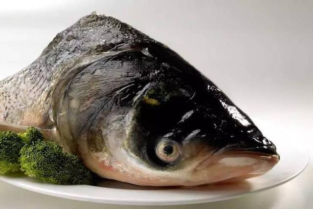 3 loại cá là bể chứa chất gây ung thư và kim loại nặng tuyệt đối đừng nên mua, nhưng nhiều người không biết vẫn ăn hàng ngày - ảnh 3