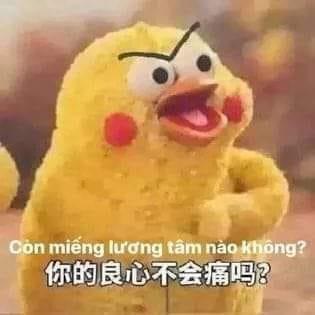 Meme chú gà Còn miếng lương tâm nào không? gây sốt MXH: Gia đình đông dân, không từ Trung Quốc cũng không phải... gà! - ảnh 1