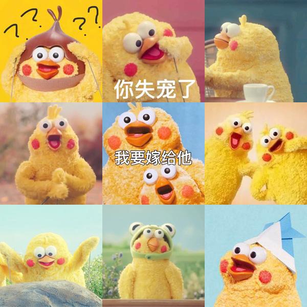 Meme chú gà Còn miếng lương tâm nào không? gây sốt MXH: Gia đình đông dân, không từ Trung Quốc cũng không phải... gà! - ảnh 2