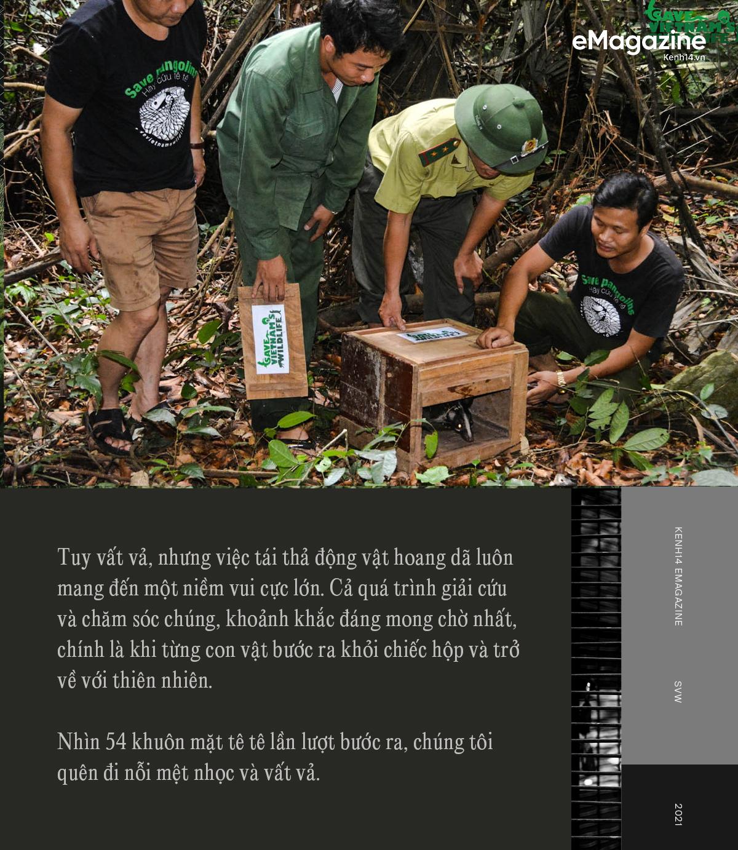 """Đi tìm công bằng cho tê tê - Câu chuyện đầy xúc động của Nhà bảo tồn đầu tiên tại Việt Nam dành giải thưởng danh giá Nobel xanh"""" - Ảnh 15."""
