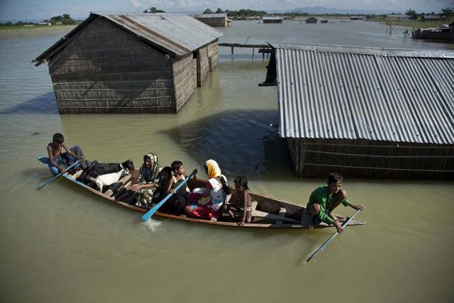 """Biến đổi khí hậu: Cảnh báo kinh hoàng về """"10 triệu người tử vong"""" nếu thế giới không hành động - ảnh 1"""