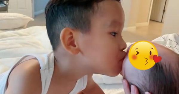 Xem Phạm Hương chọn trường cho con mới thấy choáng về độ giàu: Học phí trăm triệu, 5 phút đón con muộn mất cả trăm bạc - ảnh 3