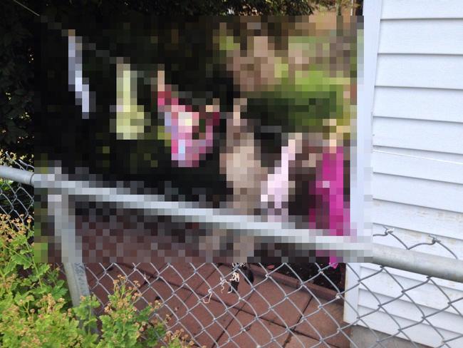 Người phụ nữ gửi đơn yêu cầu cảnh sát bắt giữ hàng xóm vì tội phơi nội y khắp sân, lý do đưa ra khiến tất cả ngã ngửa - ảnh 2