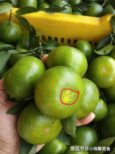 Khi mua cam, có 4 điểm bạn cần lưu ý nếu muốn chọn được quả vừa ngon lại mọng nước - ảnh 3