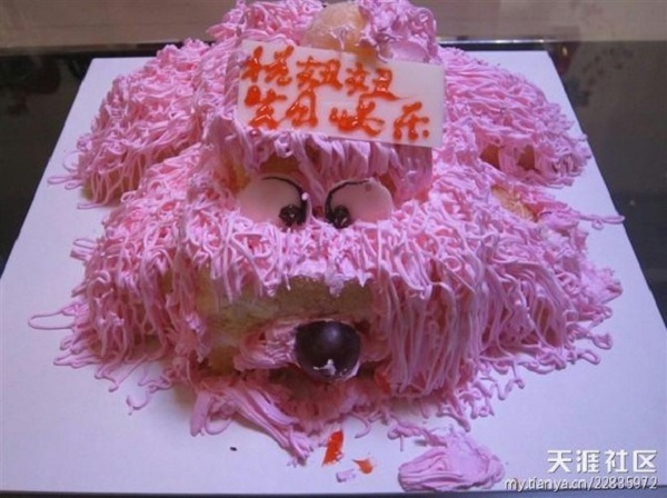 Những chiếc bánh sinh nhật... xấu kinh hoàng 16