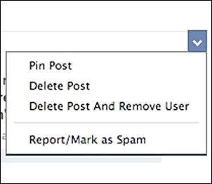 """Đua đòi"" Pinterest, Facebook cập nhật tính năng ghim post 1"