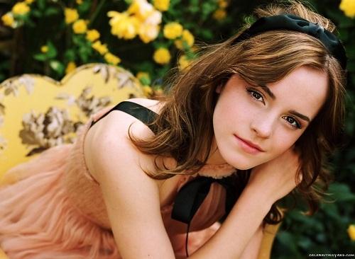 Và người có khuôn mặt đẹp nhất của năm nay là diễn viên Emma Watson.