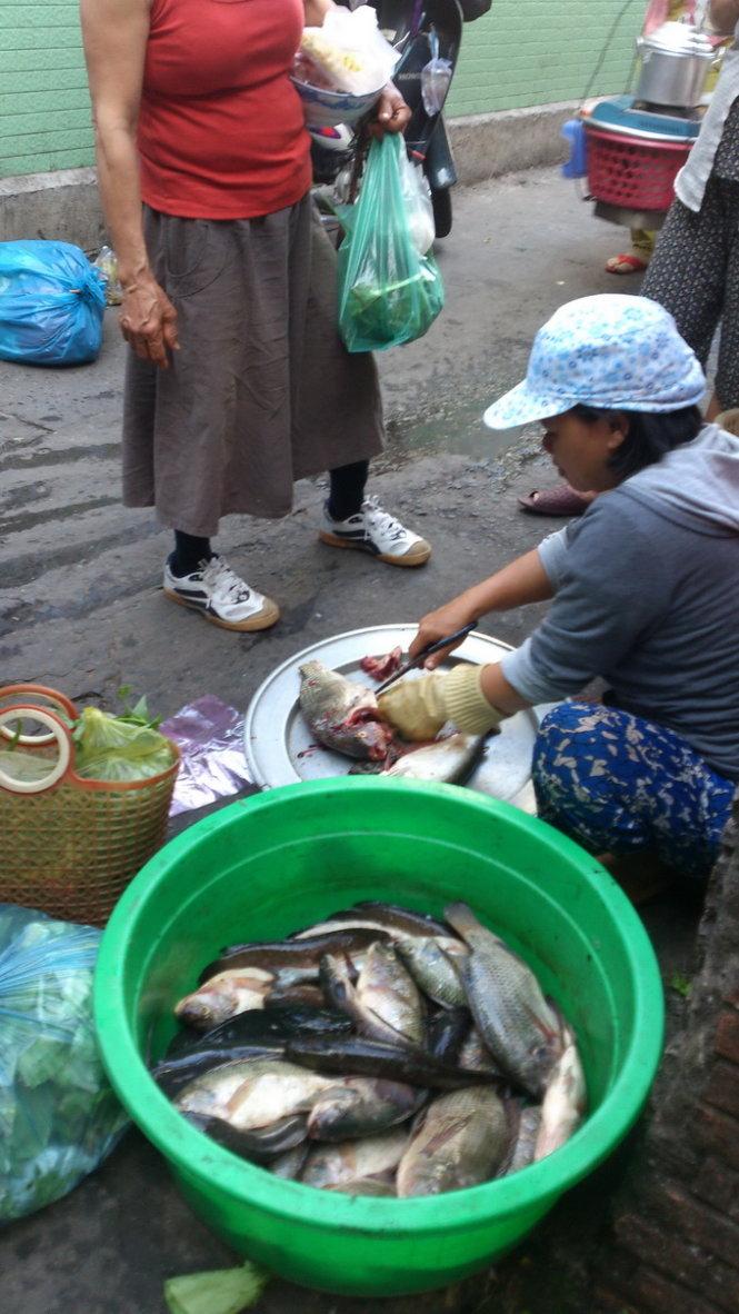 Bà Hằng - một trong những đầu nậu thu gom cá của các ghe xuồng đánh bắt cá trên kênh Nhiêu Lộc - Thị Nghè - mang ra chợ Nhỏ (P.15, Q.Bình Thạnh) bán