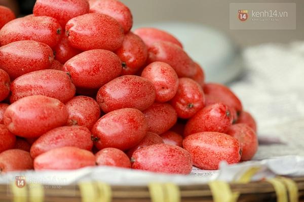 Mùa nhót chín đỏ rực góc phố Hà Nội