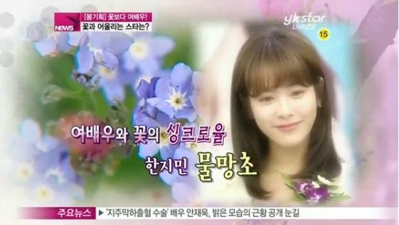 Những mỹ nhân Hàn đẹp như tiên hoa 5
