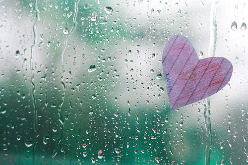 Chỉ còn tiếng mưa rơi 1