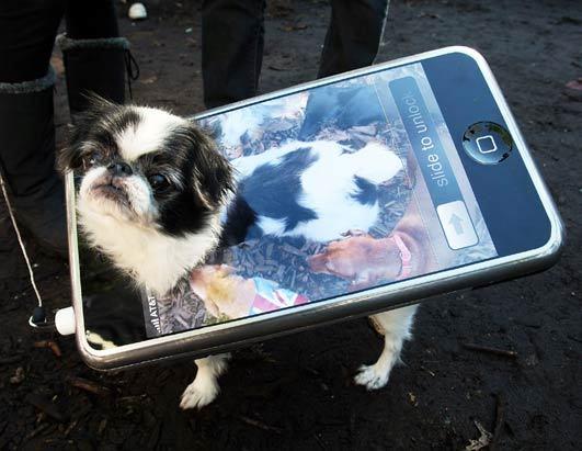 iPhone 5S sẽ sở hữu nhiều kích thước màn hình khác nhau 3