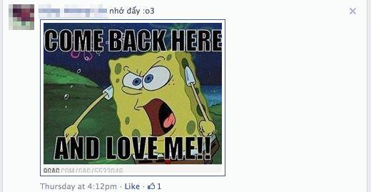 Trào lưu comment bằng ảnh tràn ngập Facebook 9