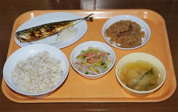 Thưởng thức... cơm tù tại nhà hàng siêu độc đáo ở Nhật Bản 3