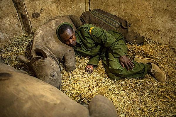 """Đến Kenya xem người dân bảo vệ động vật như """"báu vật"""" 5"""