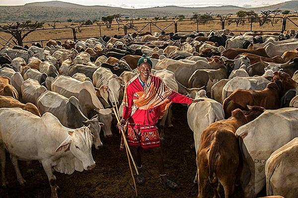 """Đến Kenya xem người dân bảo vệ động vật như """"báu vật"""" 11"""