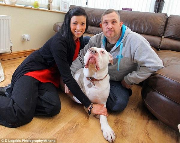 Hoãn tuần trăng mật 12.000 đôla để chữa bệnh cho cún cưng 1
