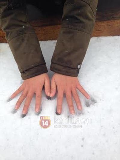 Chùm ảnh hot: Tuyết rơi dày, phủ trắng Sa Pa 24