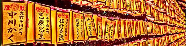 """Đẹp kinh ngạc vườn hoa """"tình yêu vĩnh cửu"""" ở Nhật Bản 12"""
