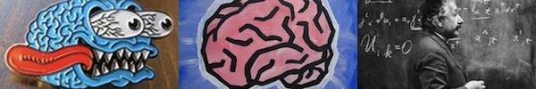 Nhận biết người thông minh qua các yếu tố kỳ quặc 11