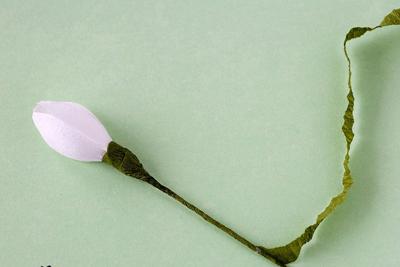 Cắt giấy làm hoa giọt tuyết xinh như hoa thật 5