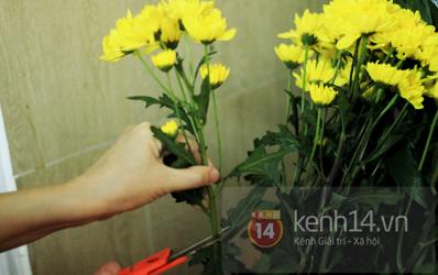 Xem nhanh cách cắm hoa cúc đơn giản 3