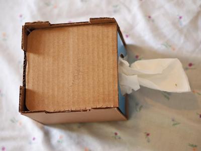 Hộp đựng giấy ăn trong dáng chú thỏ cực đáng yêu 3