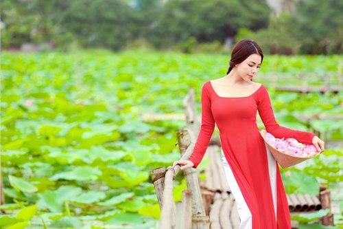 Muôn vẻ mỹ nhân Việt khoe sắc bên hoa sen 17