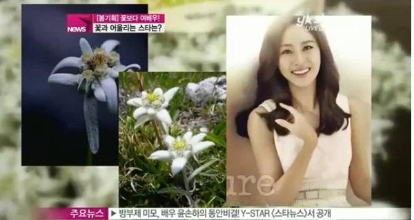 Những mỹ nhân Hàn đẹp như tiên hoa 8