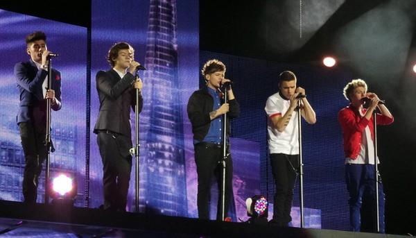 One Direction luyện võ để có sức đi tour 1