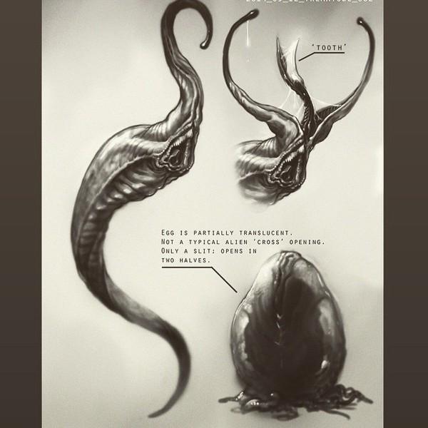"""Đạo diễn """"Elysium"""" nhá hàng một phim bí ẩn về Alien 8"""