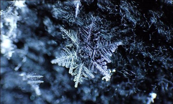 Bí mật bất ngờ về tuyết khiến bạn muốn lên Sa Pa ngay lập tức 5