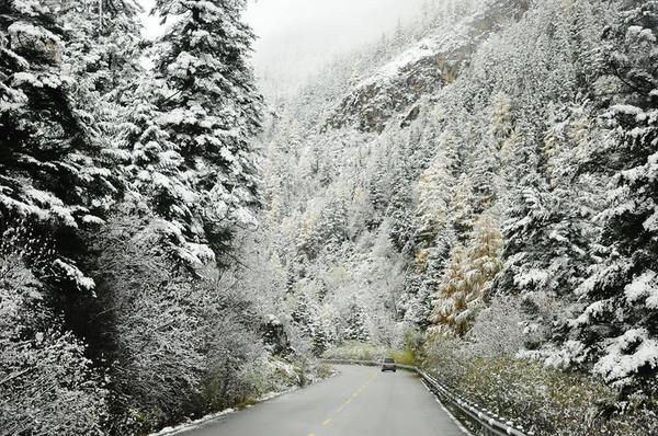 Bí mật bất ngờ về tuyết khiến bạn muốn lên Sa Pa ngay lập tức 1