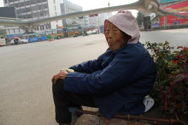 Cảm động vì hình ảnh khốn khổ của bà lão 88 tuổi đi tìm con 1