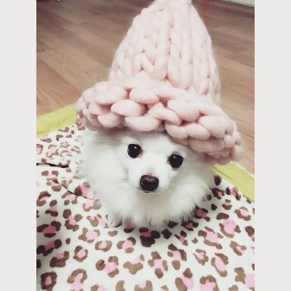"""Giới trẻ Hàn """"sốt"""" với chiếc mũ beanie sợi to ngộ nghĩnh 7"""