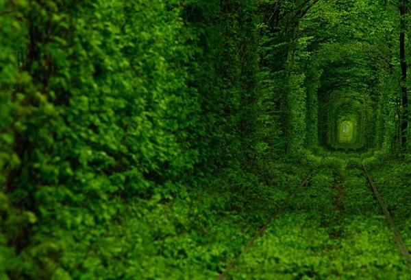 Những con đường tình yêu đẹp ngỡ ngàng trên thế giới 9