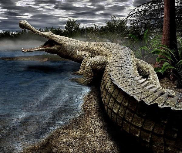 Hậu duệ đáng sợ của những quái vật thời tiền sử 12